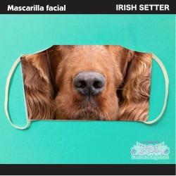 Mascarilla Irish Setter...